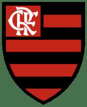 فلامنغو يحرز لقب الدوري البرازيلي